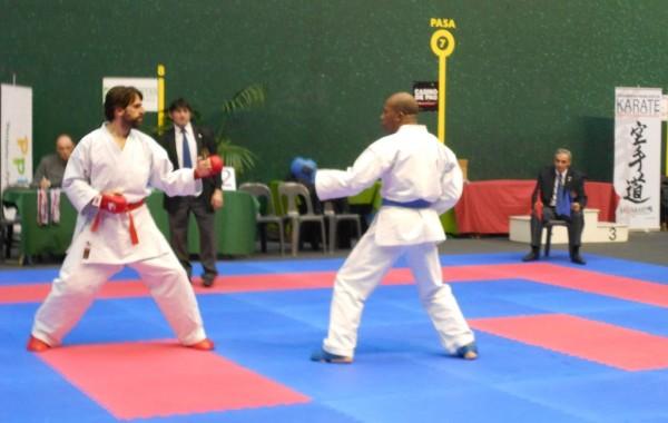2013:      23-24 février,   Compétition Combat Enfant et Adulte à Pau